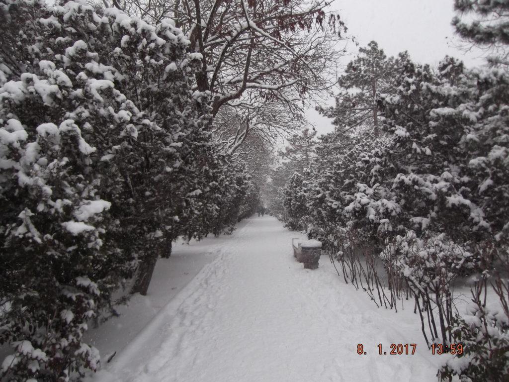 пр. Ленина в Евпатории зимой